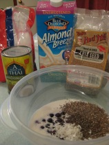 Blueberry Chia Coconut Pudding - ready to mix up!