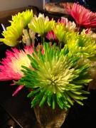 Karate Flowers